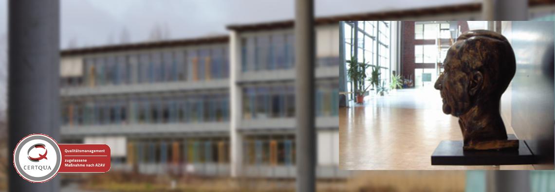 Bsz Dessau